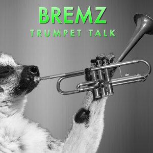 BremZ 歌手頭像