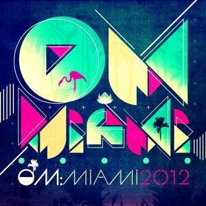 Om: Miami 2012 歌手頭像