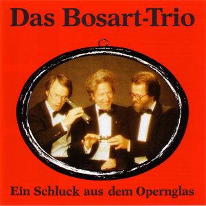 BosArt Trio アーティスト写真