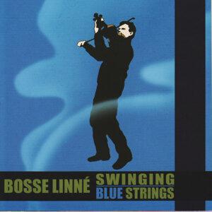 Bosse Linne 歌手頭像