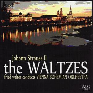 Vienna Bohemian Orchestra 歌手頭像
