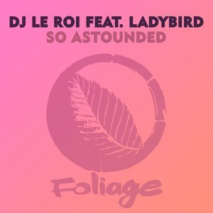 DJ Le Roi