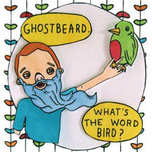 Ghostbeard 歌手頭像