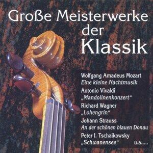 Grosse Meisterwerke der Klassik 歌手頭像