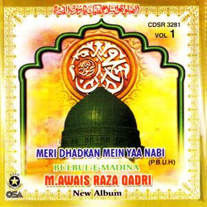 M.Owais Raza Qadri 歌手頭像