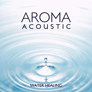 Aroma Acoustic WATER HEALING・・・ 歌手頭像