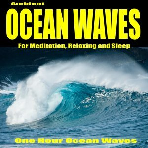 One Hour Ocean Waves 歌手頭像