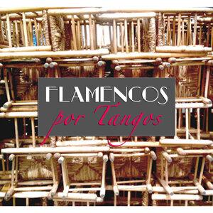 Flamencos Por Tangos アーティスト写真