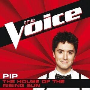 Pip 歌手頭像