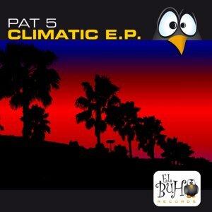 Pat 5