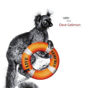 Vein feat. Dave Liebman 歌手頭像