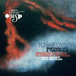 Orquestra Sinfônica do Estado de São Paulo e Fabio Mechetti 歌手頭像