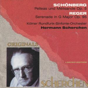 Kölner Rundfunk-Sinfonie Orchester 歌手頭像