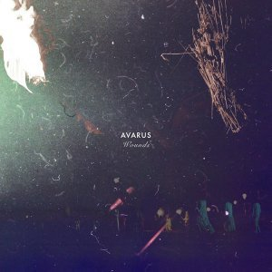 Avarus 歌手頭像