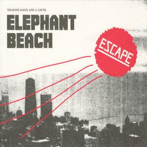Elephant Beach 歌手頭像