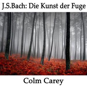 Colm Carey 歌手頭像