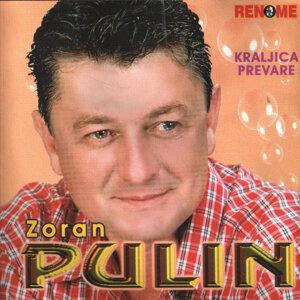 Zoran Pulin 歌手頭像