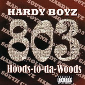 Hardy Boyz 歌手頭像