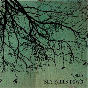 Sky Falls Down 歌手頭像