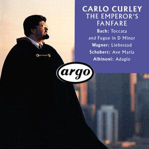 Carlo Curley 歌手頭像