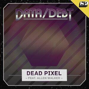 Data/Debt