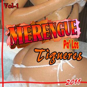 Pa' los Tigueres 歌手頭像