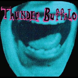 Thunder Buffalo 歌手頭像