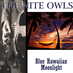 The Nite Owls 歌手頭像