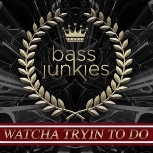 Bass Junkies 歌手頭像