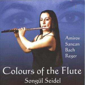 Songül Seidel 歌手頭像
