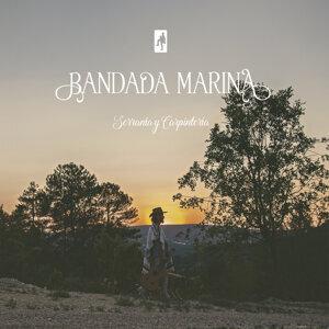 Bandada Marina