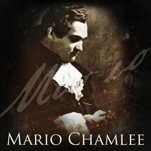 Mario Chamlee 歌手頭像