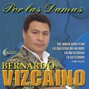 Bernardo Vizcaino