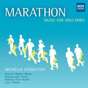 Michelle Stebleton 歌手頭像