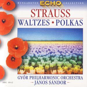 Győr Philharmonic Orchestra, János Sándor 歌手頭像