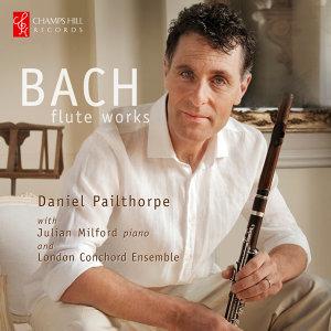 Daniel Pailthorpe 歌手頭像