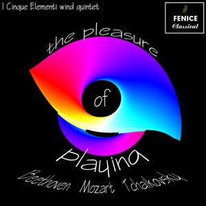 I Cinque Elementi Wind Quintet 歌手頭像