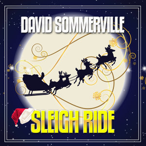 David Sommerville 歌手頭像