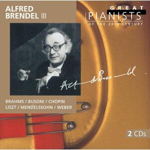 London Philharmonic Orchestra,Bernard Haitink,London Symphony Orchestra,Claudio Abbado,Alfred Brendel,Berliner Philharmoniker 歌手頭像