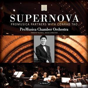 ProMuscia Chamber Orchestra 歌手頭像