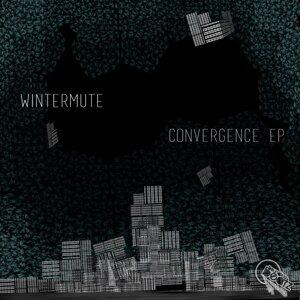 wintermute 歌手頭像
