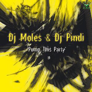 Dj Moles, Dj Pindi 歌手頭像