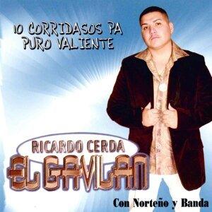 """Ricardo Cerda """"El Gavilán"""" 歌手頭像"""