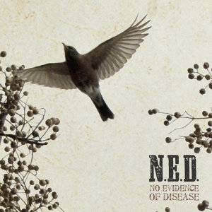 N.E.D. 歌手頭像