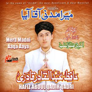 Hafiz Abdul Qadir Qadri 歌手頭像
