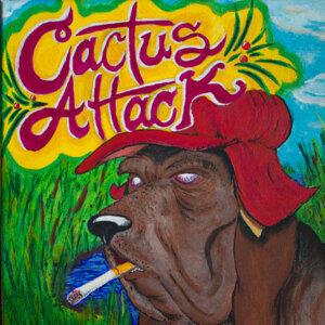 Cactus Attack 歌手頭像