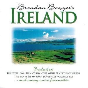 Brendan Bowyer 歌手頭像