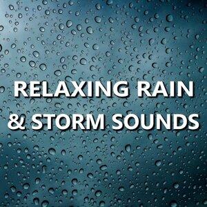 Rain Sounds 歌手頭像
