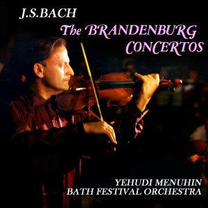 Bath Festival Chamber Orchestra 歌手頭像