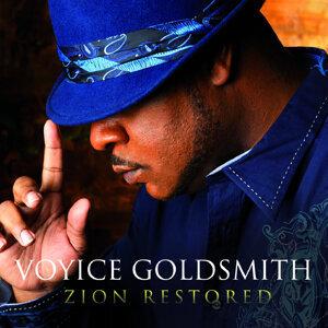 Voyice Goldsmith 歌手頭像